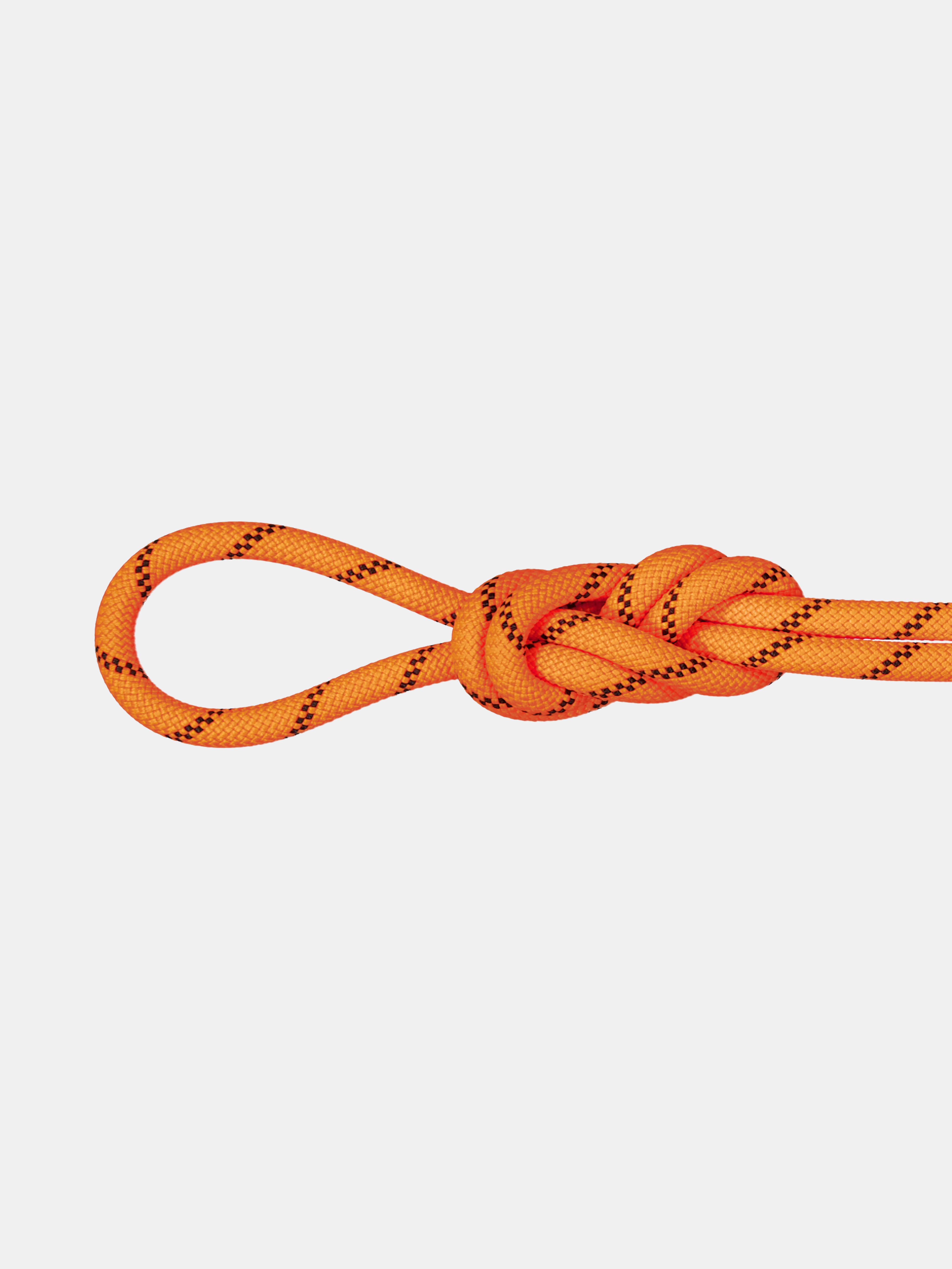8.7 Alpine Sender Dry Rope thumbnail