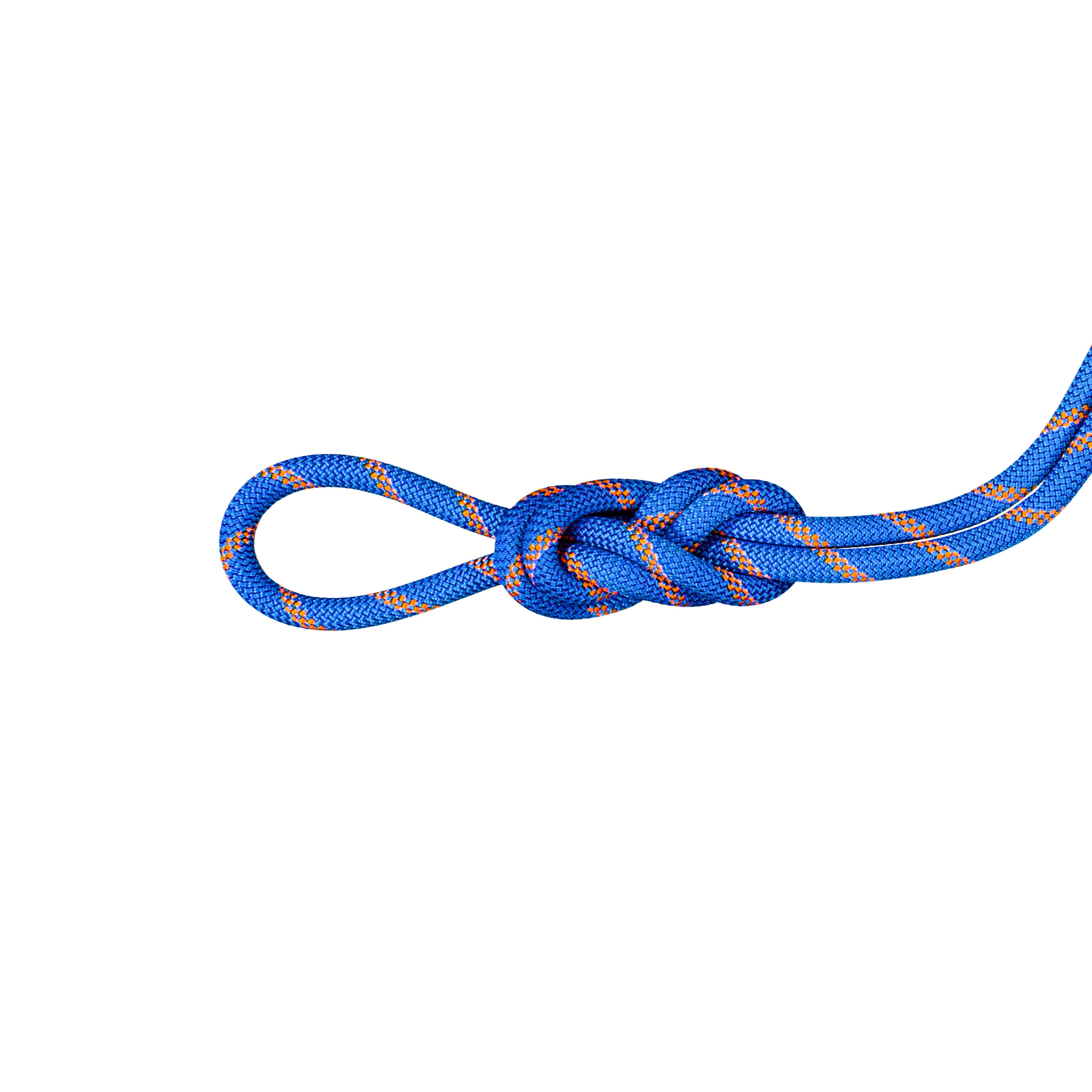 9.0 Alpine Sender Dry Rope - 50 m, Dry Standard, ice-sunrise thumbnail