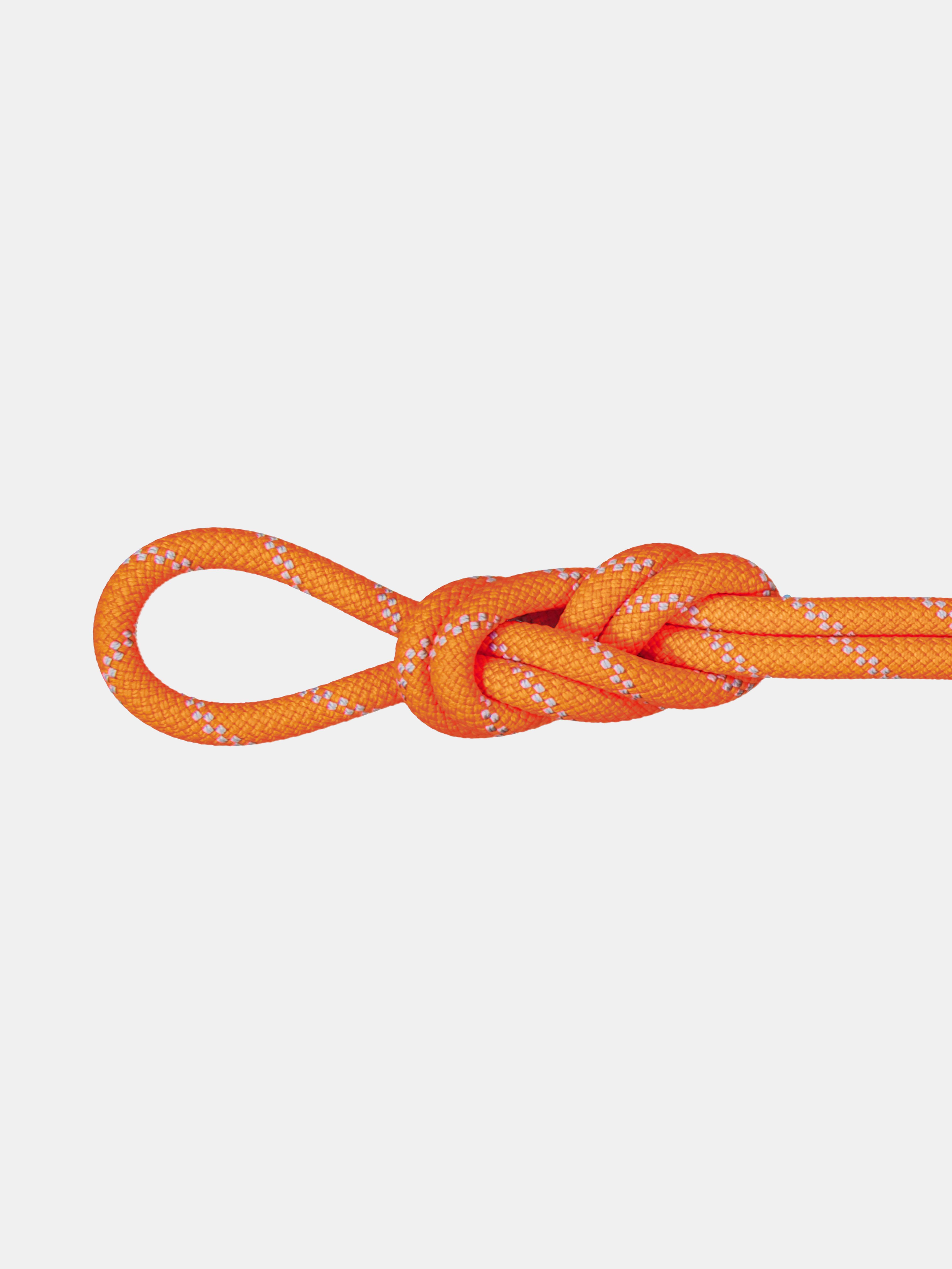 9.5 Alpine Dry Rope thumbnail