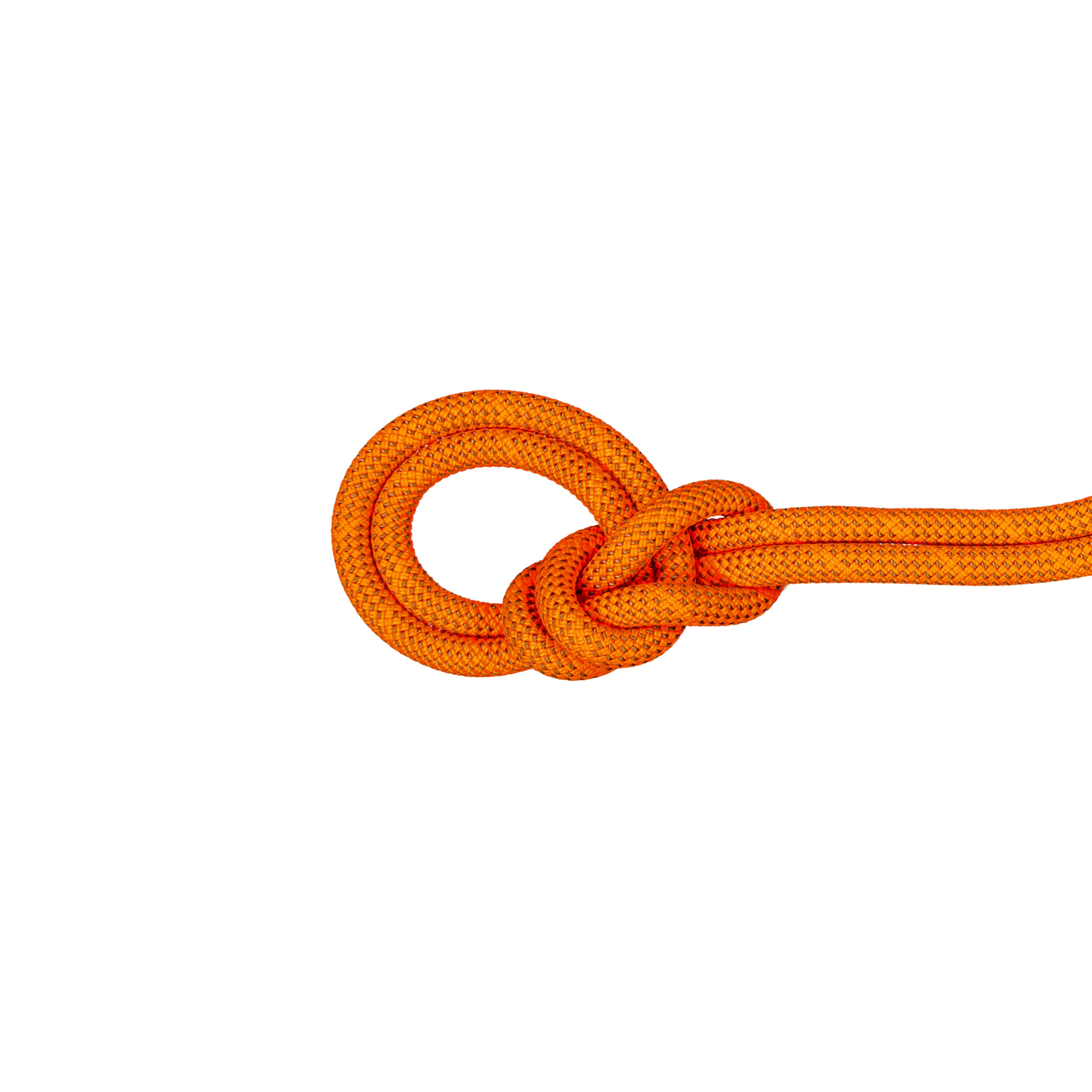 9.8 Crag Dry Rope thumbnail