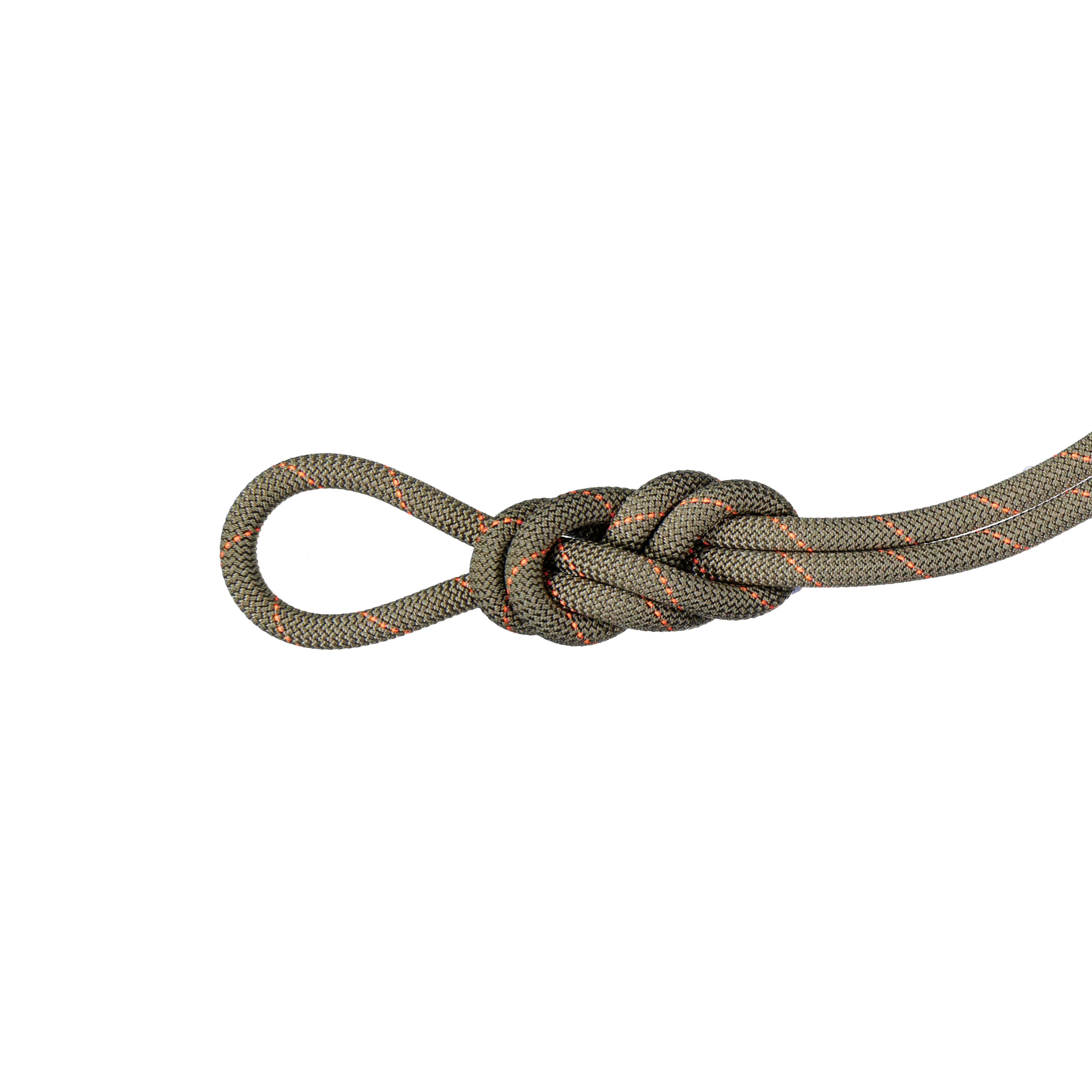 9.9 Gym Workhorse Classic Rope - 40 m, Classic Standard, boa thumbnail