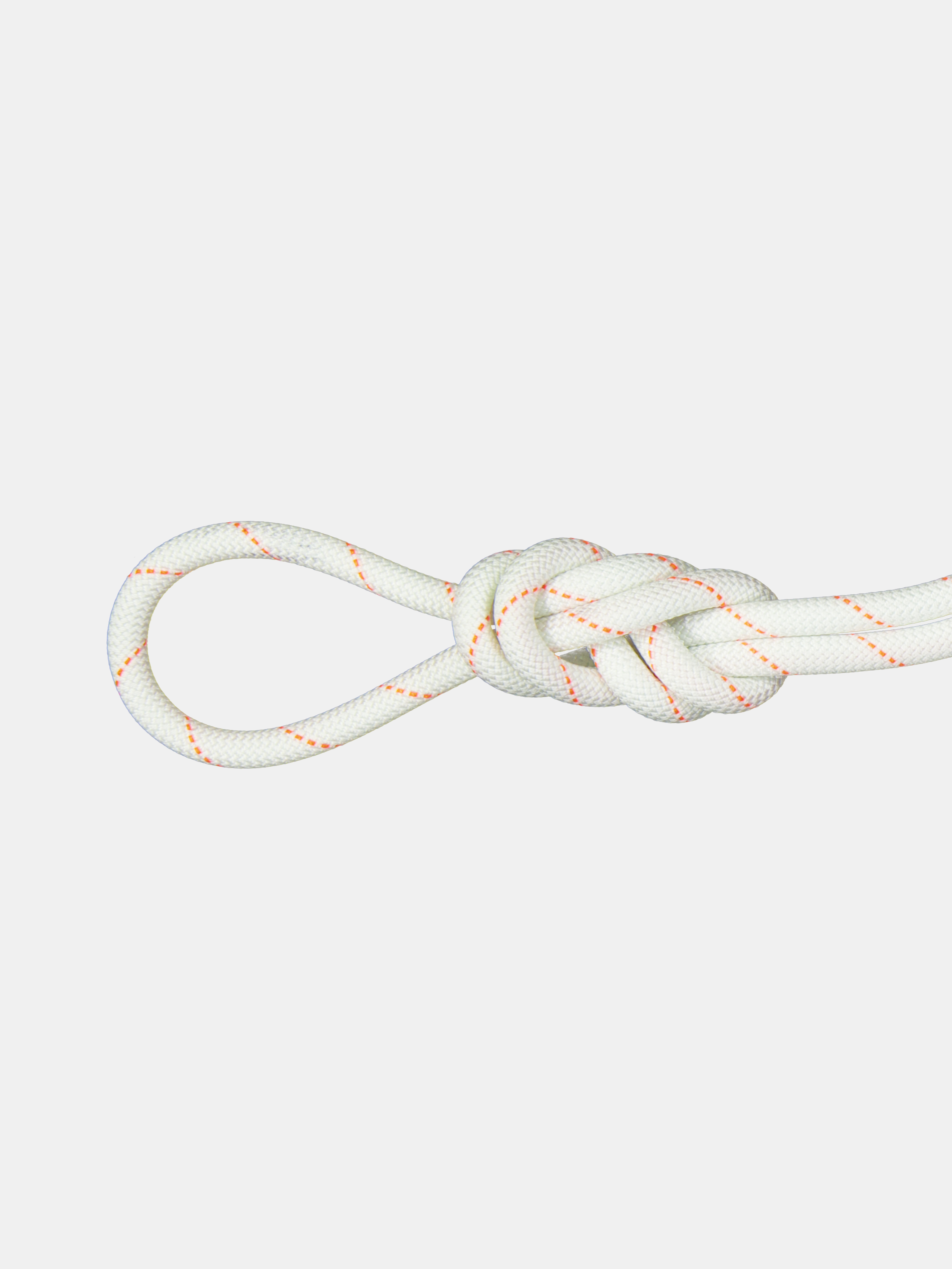 9.9 Gym Workhorse Dry Rope image
