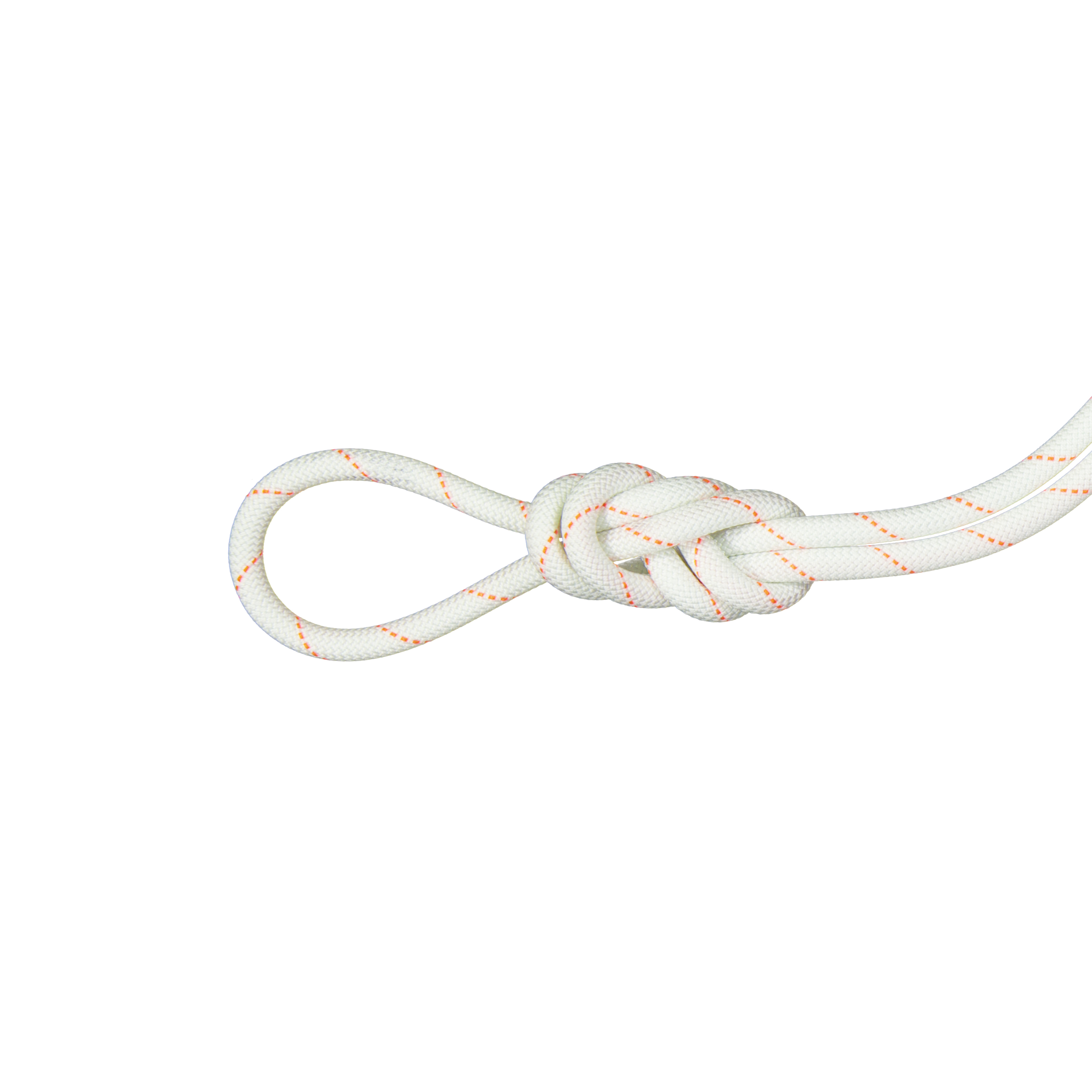 9.9 Gym Workhorse Dry Rope thumbnail