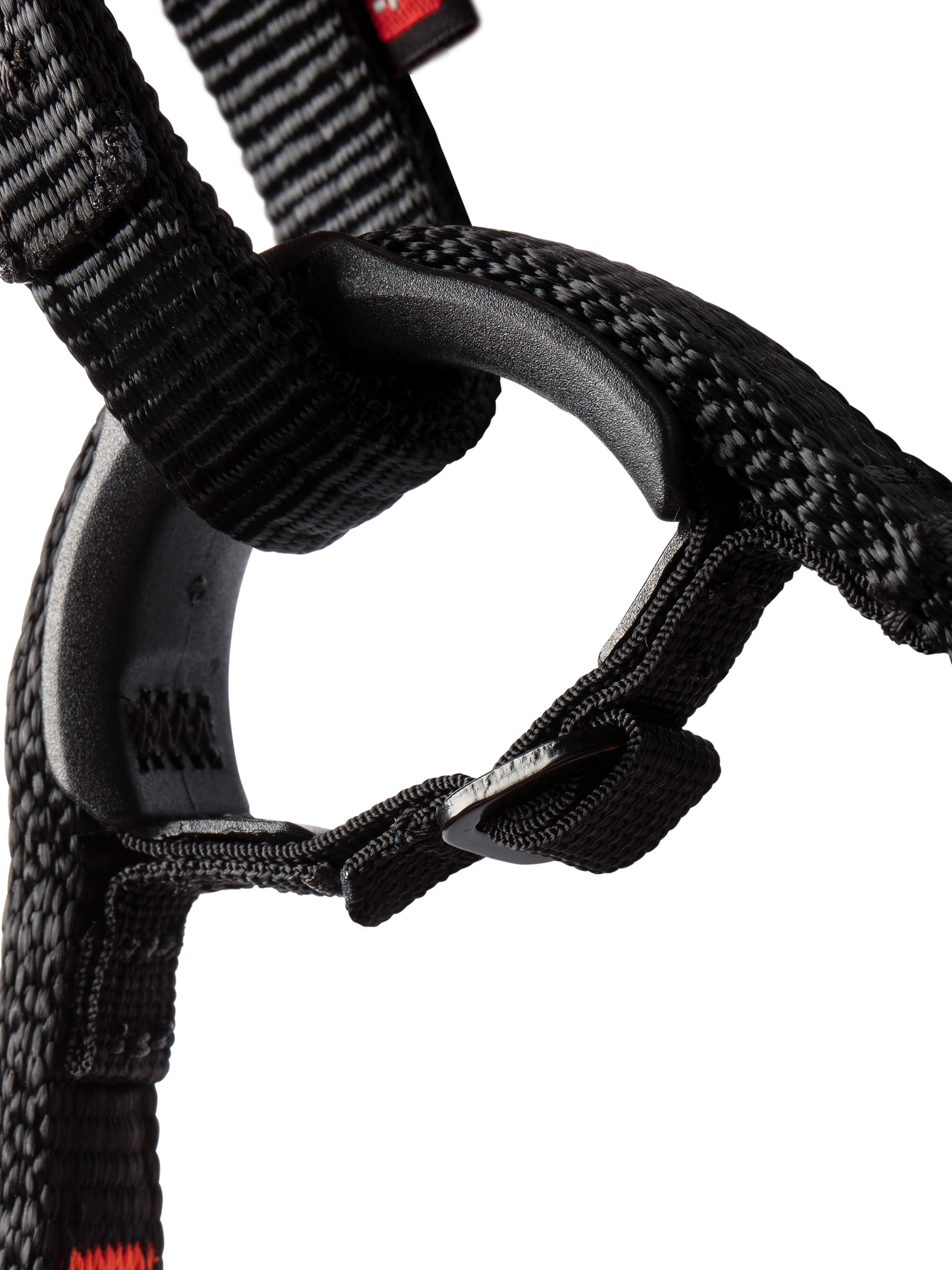 Nordwand Harness thumbnail
