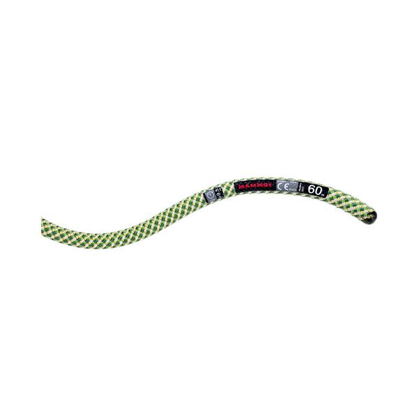 Mammut Single Ropes - 9.5 Infinity Classic