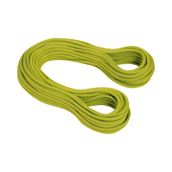 Mammut Single Ropes - 9.5 Infinity Dry