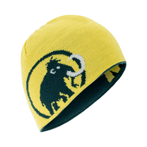 5c39382e823 Mammut Logo Beanie
