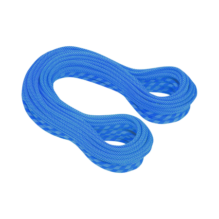 Mammut Single Ropes - 9.5 Infinity Dry