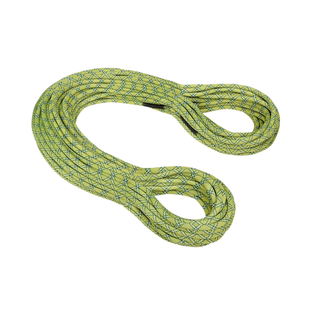 Mammut Single Ropes - 9.5 Infinity Protect