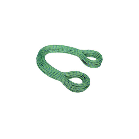 Mammut Half & Twin Ropes - 7.5 Twilight Dry