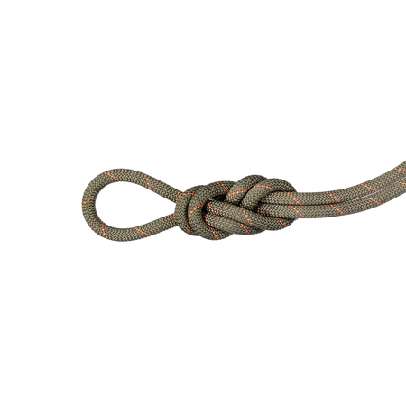 Mammut Escalade - 9.9 Gym Workhorse Classic Rope