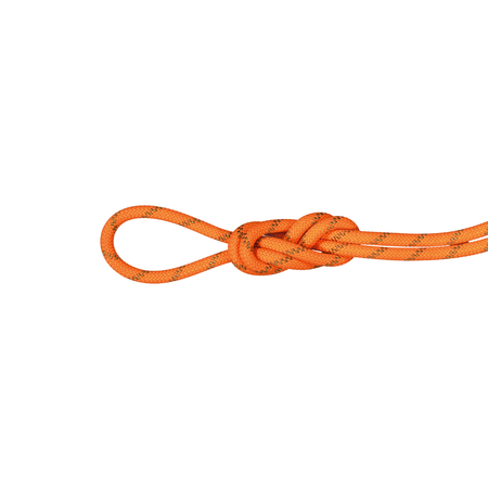 Mammut Half & Twin Ropes - 8.0 Alpine Dry Rope