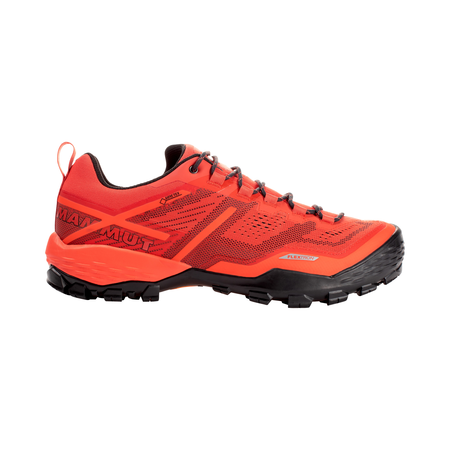 Mammut Hiking Shoes - Ducan Low GTX® Men