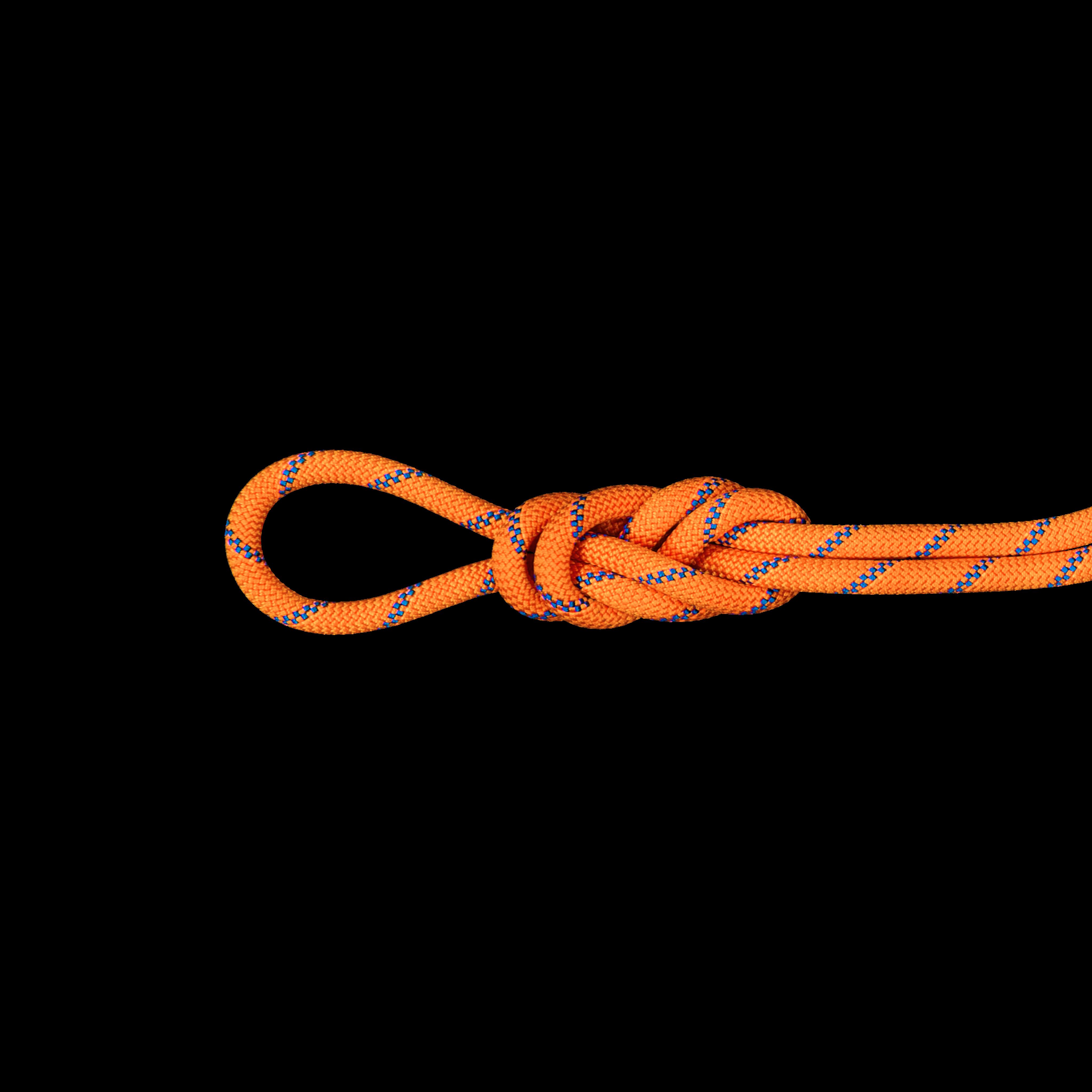9.0 Alpine Sender Dry Rope - 60 m, Dry Standard, sunrise-ice thumbnail