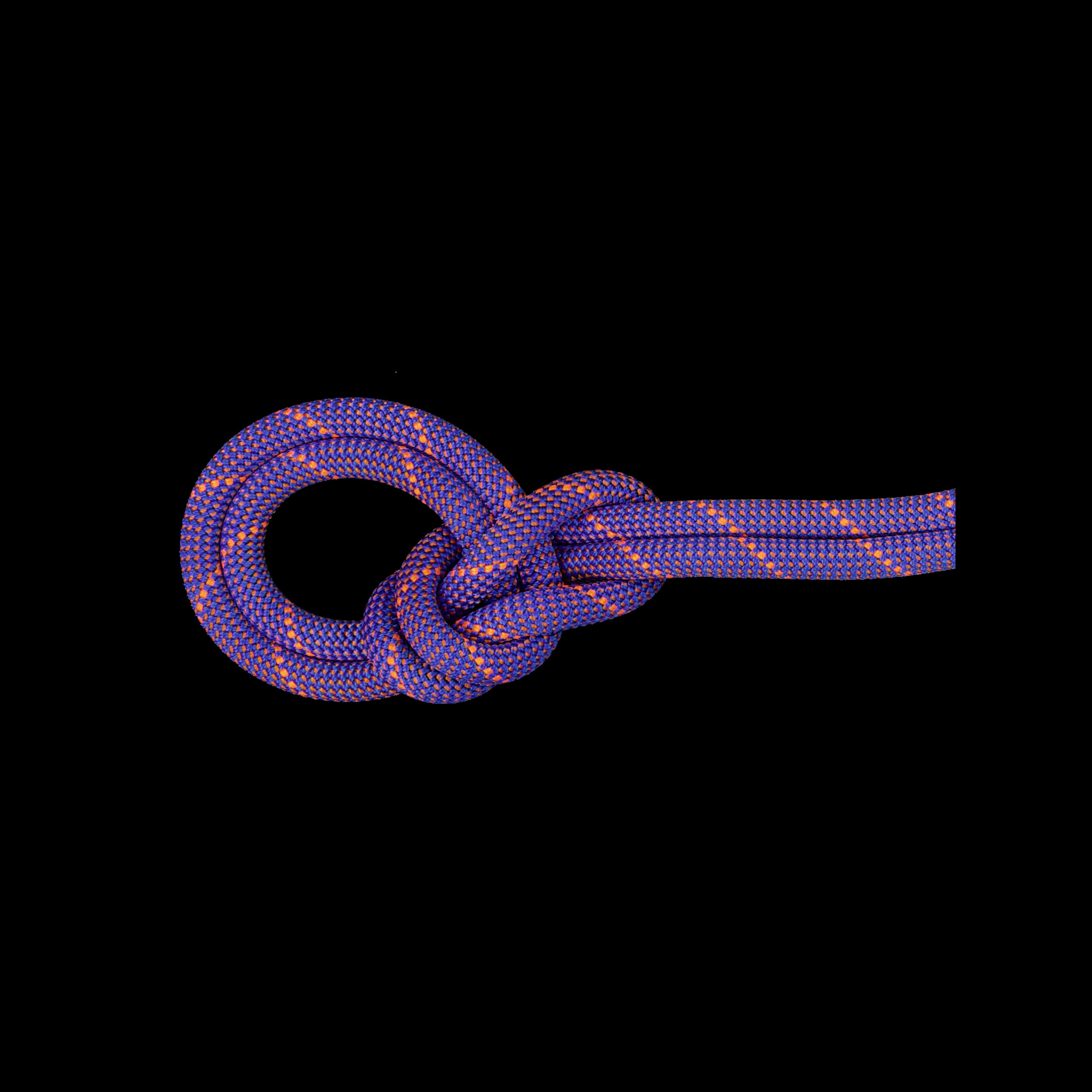 9.0 Crag Sender Dry Rope product image