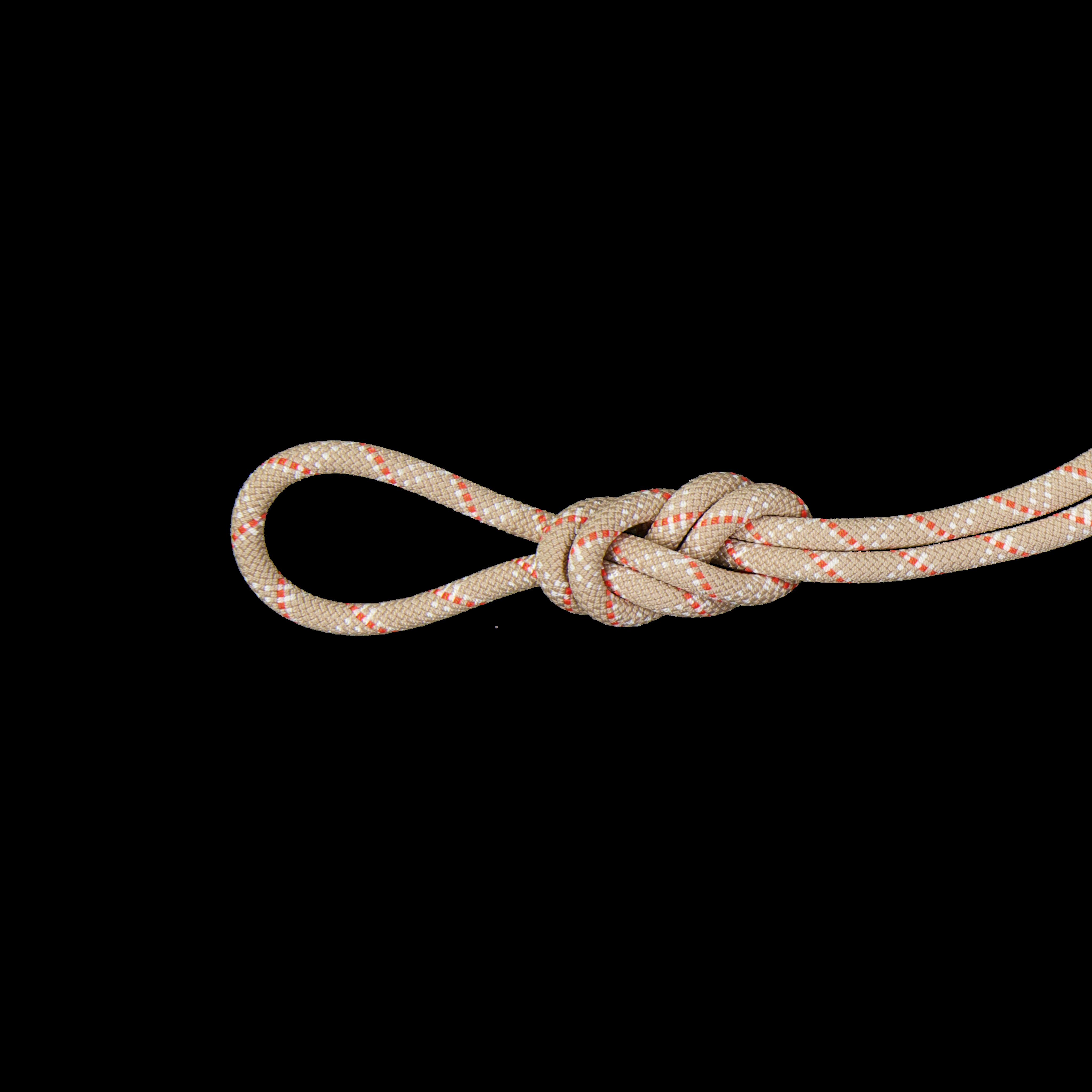 9.5 Gym Classic Rope - 50 m, Classic Standard, desert-white thumbnail