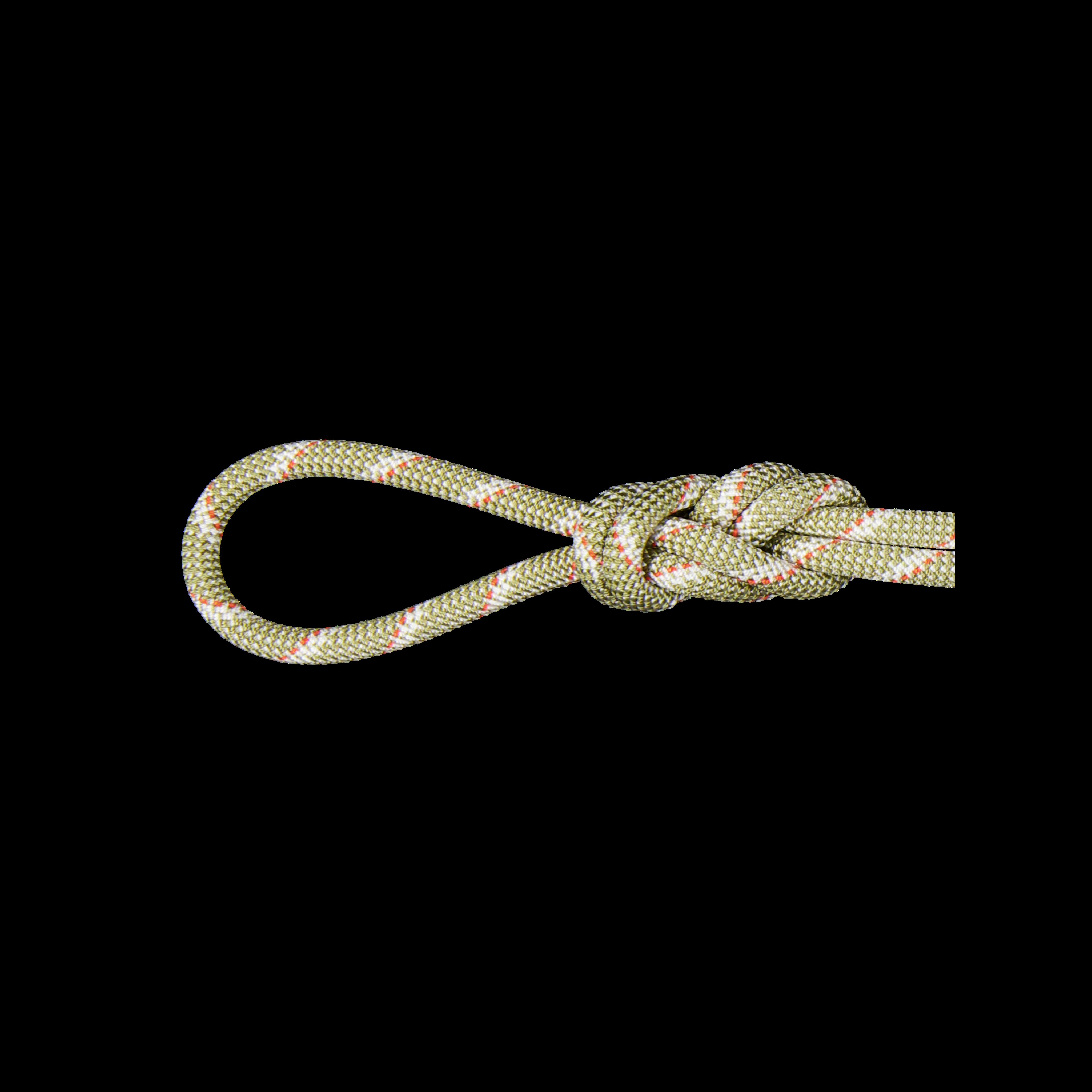 8.0 Alpine Classic Rope product image