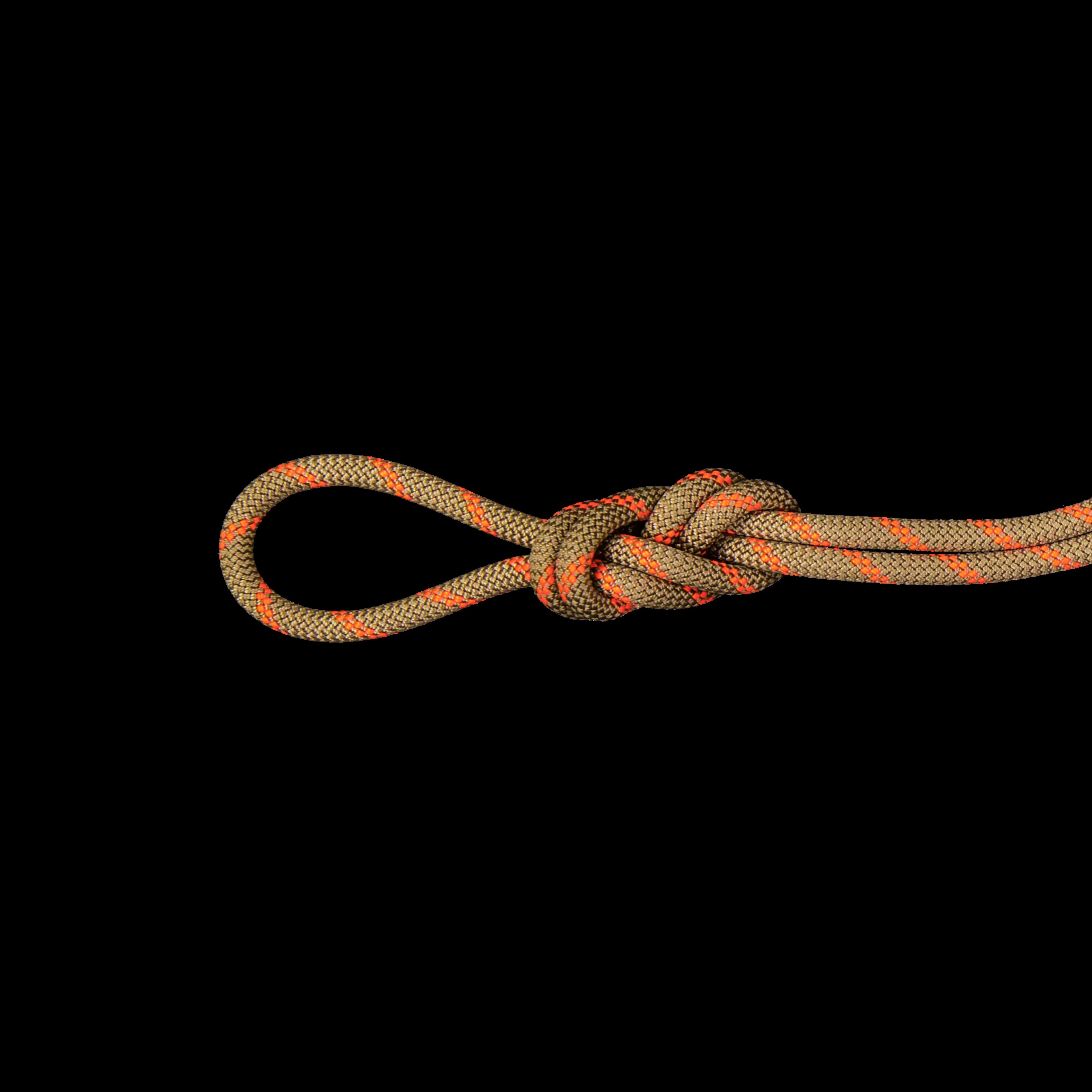 8.0 Alpine Dry Rope - 30 m, Dry Standard, boa-safety orange thumbnail